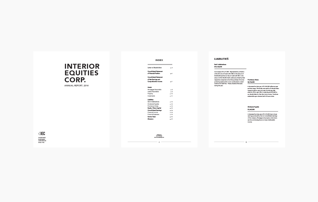 IEC Annual Report 2014 | Print Layout | Branding | Graphic Design