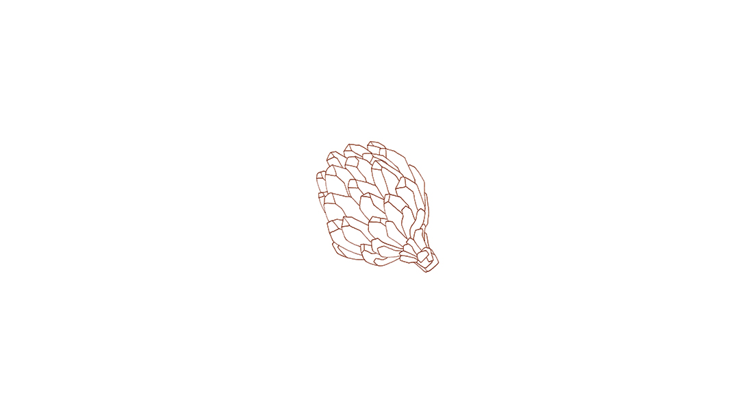 Pastiche - custom illustrations - artichoke