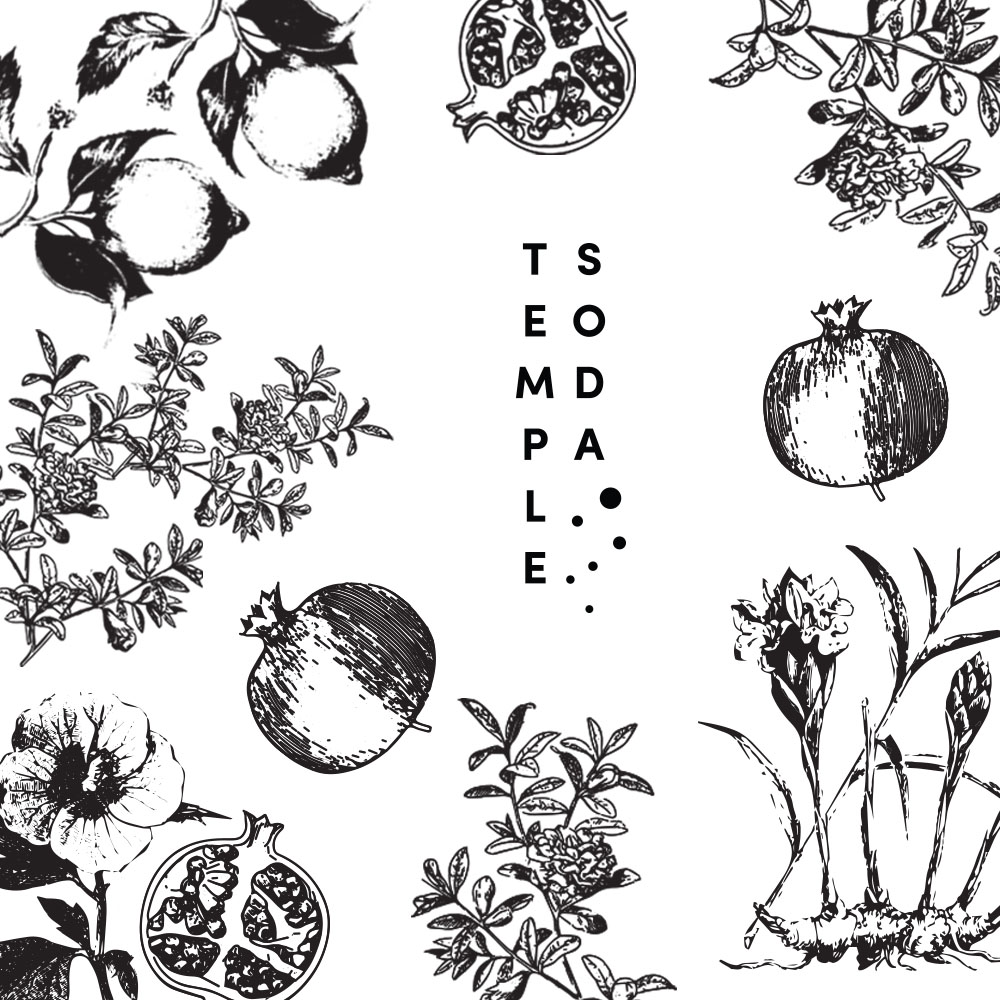 Temple Soda Illustrations